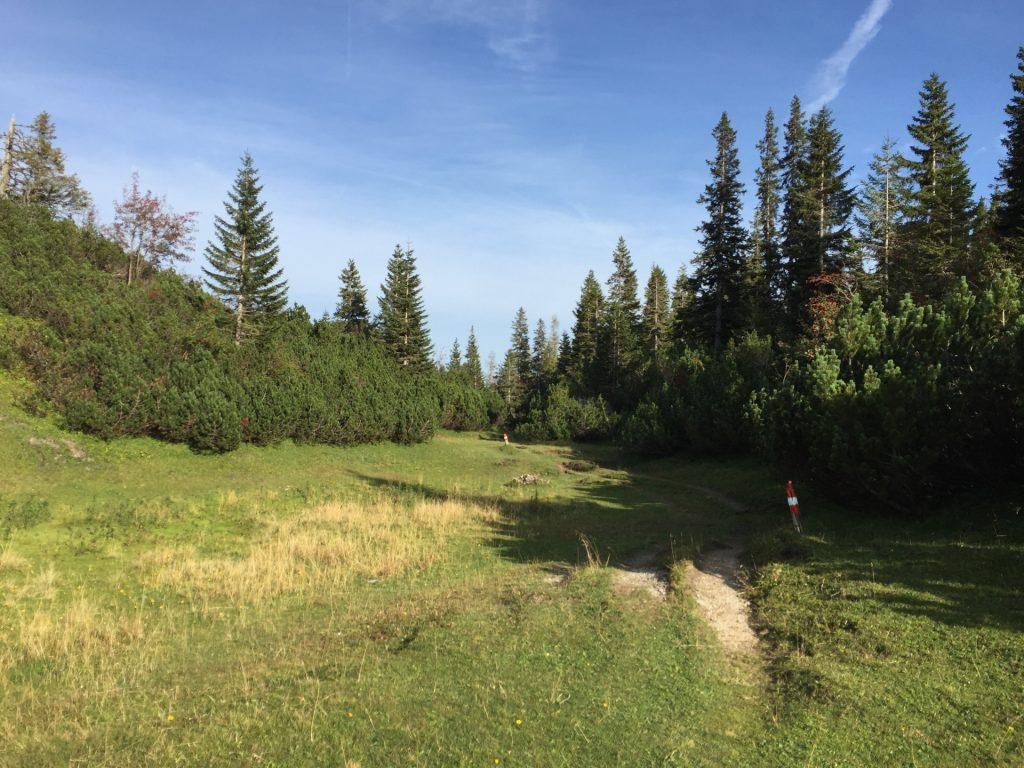 """Trail towards """"Klammboden"""""""