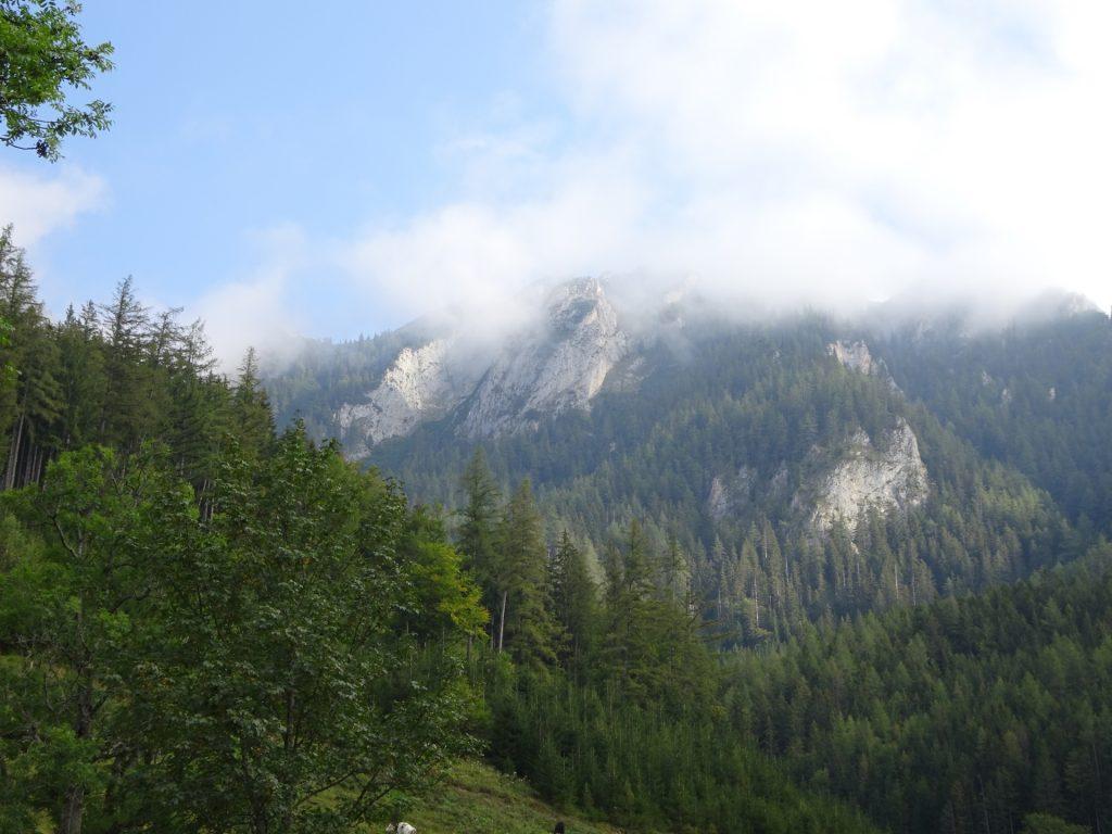 "View towards the ""Grete Klinger Steig"""