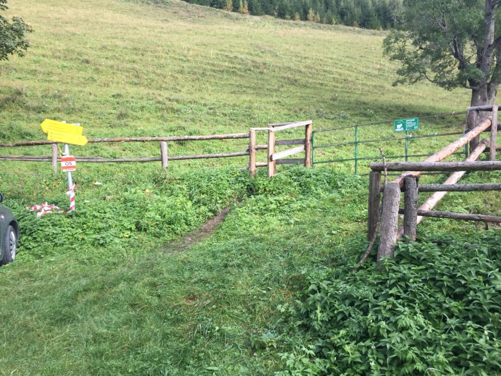 """Start of the trail at the """"Hirnalm"""" (through the gate)"""