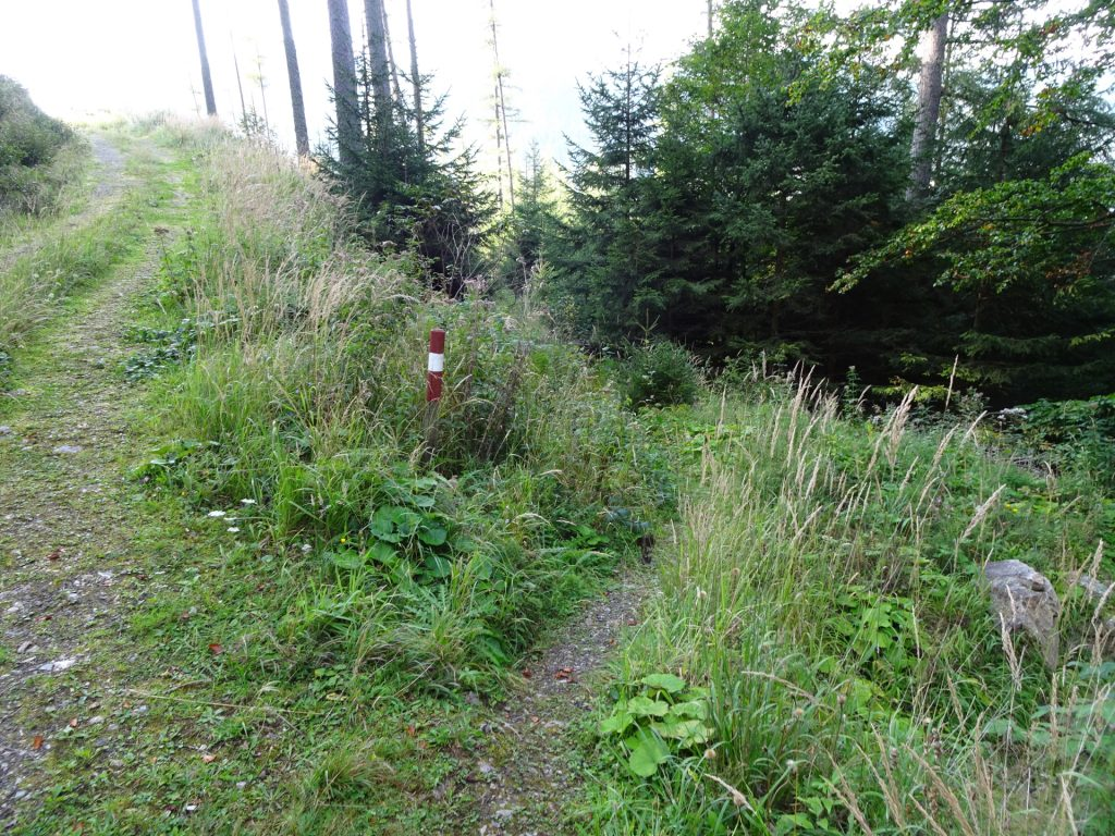 """Follow the red-white-red marked trail (right) towards """"Barbarakreuz"""""""
