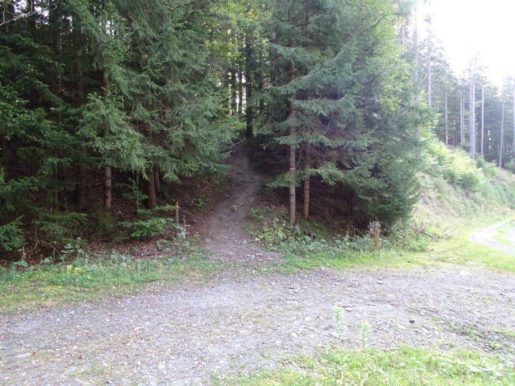 """Stay straight and follow the trail upwards to """"Barbarakreuz"""""""
