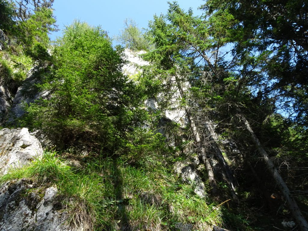 Approaching the cliffs