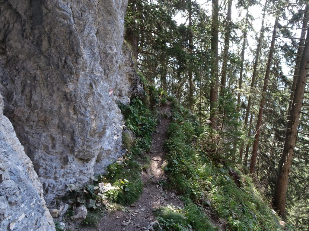 """The trail next to the cliff cave towards """"Fahnenköpfl"""""""