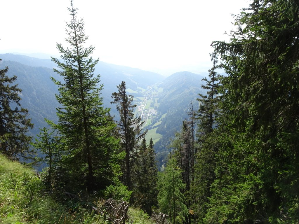 """View from the trail down to the valley (""""Vordernberg"""")"""