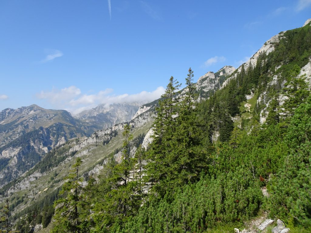 """The """"Fahnenköpfl"""" can be bypassed by the small trail, keep right to follow the via ferrata"""