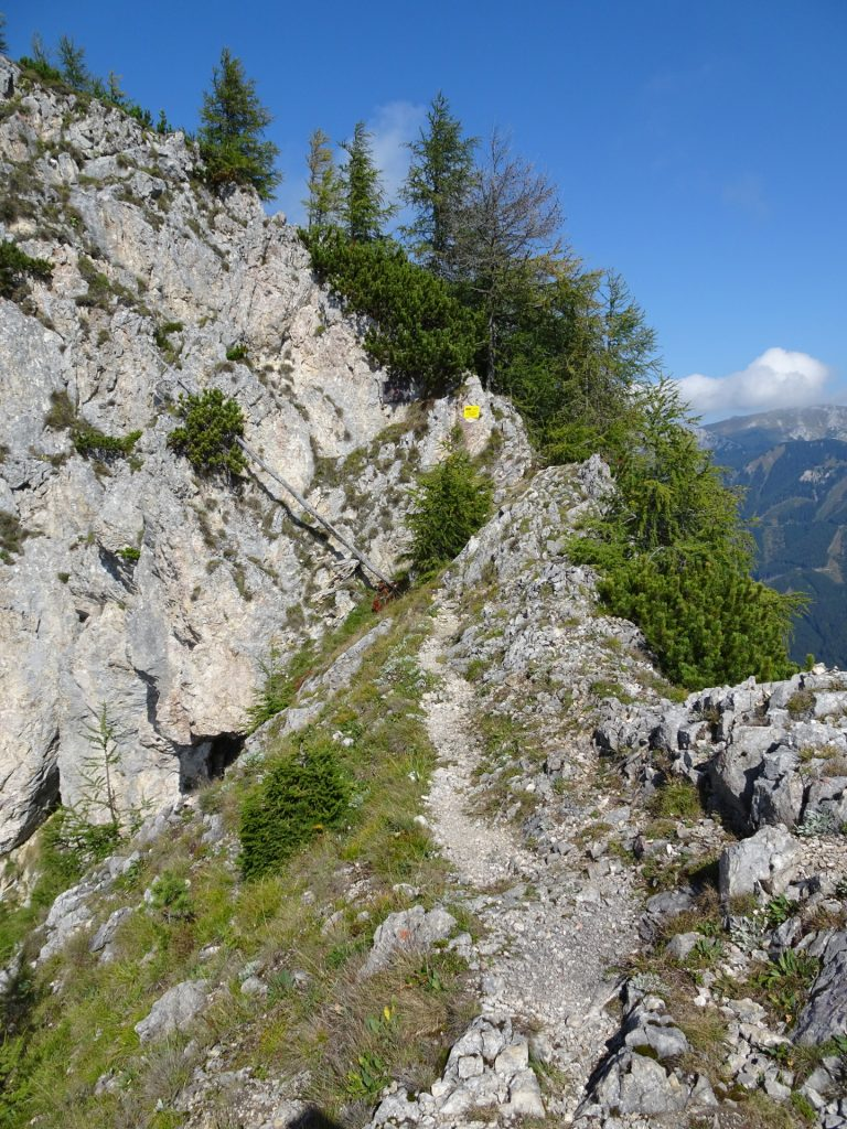 "The ridge towards the begin of the second part of ""Grete Klinger Steig "" (B/C)"