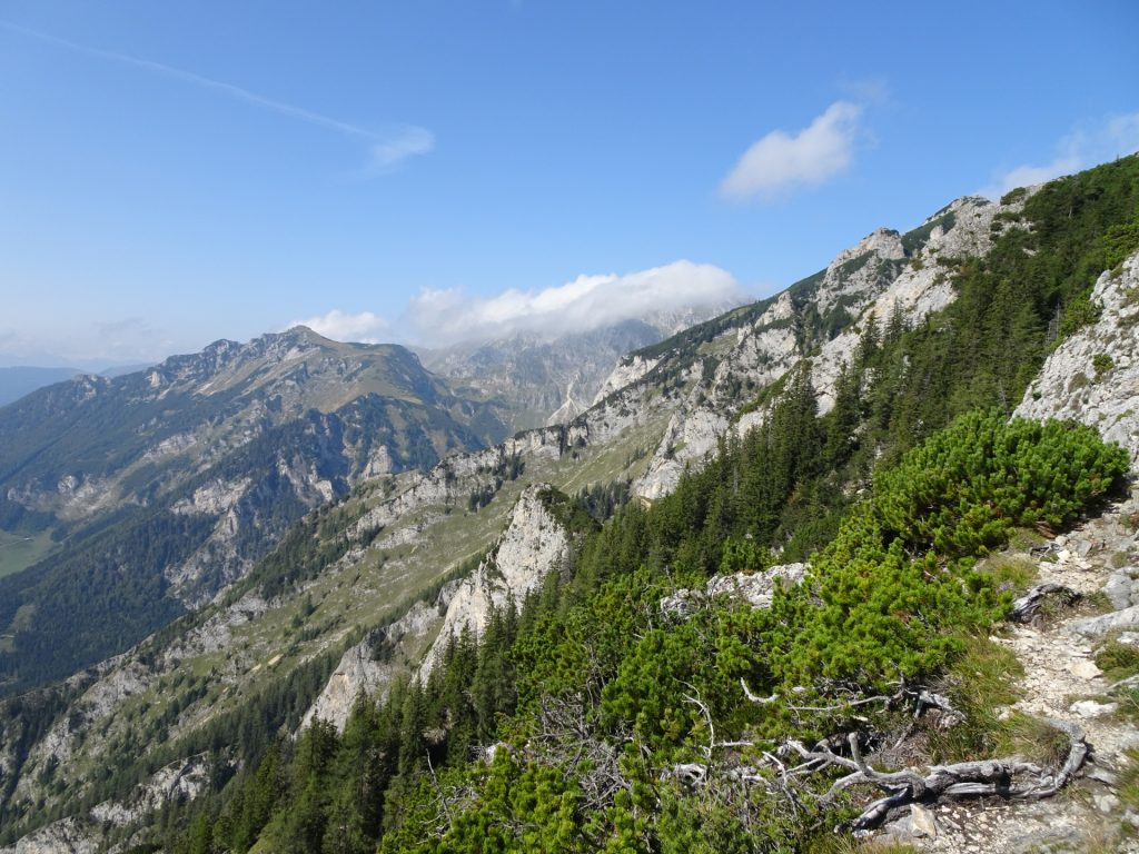 View from the trail
