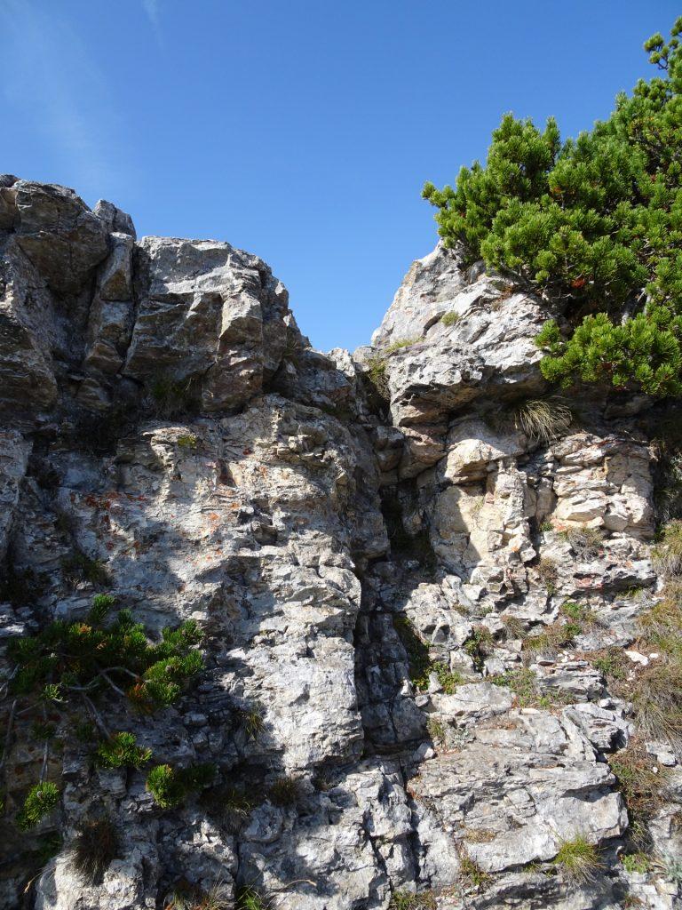 "Climbing up towards ""Vordernberger Mauer"" (UIAA I)"