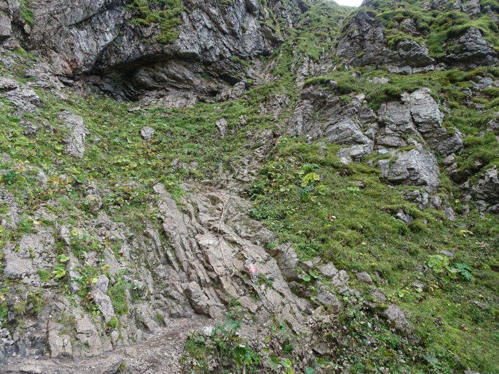 """A bit of easy climbing on the trail towards """"Eisenerzer Reichenstein"""""""