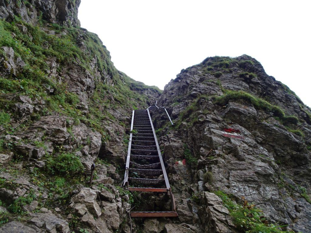 """Long iron ladder up to """"Eisenerzer Reichenstein"""""""