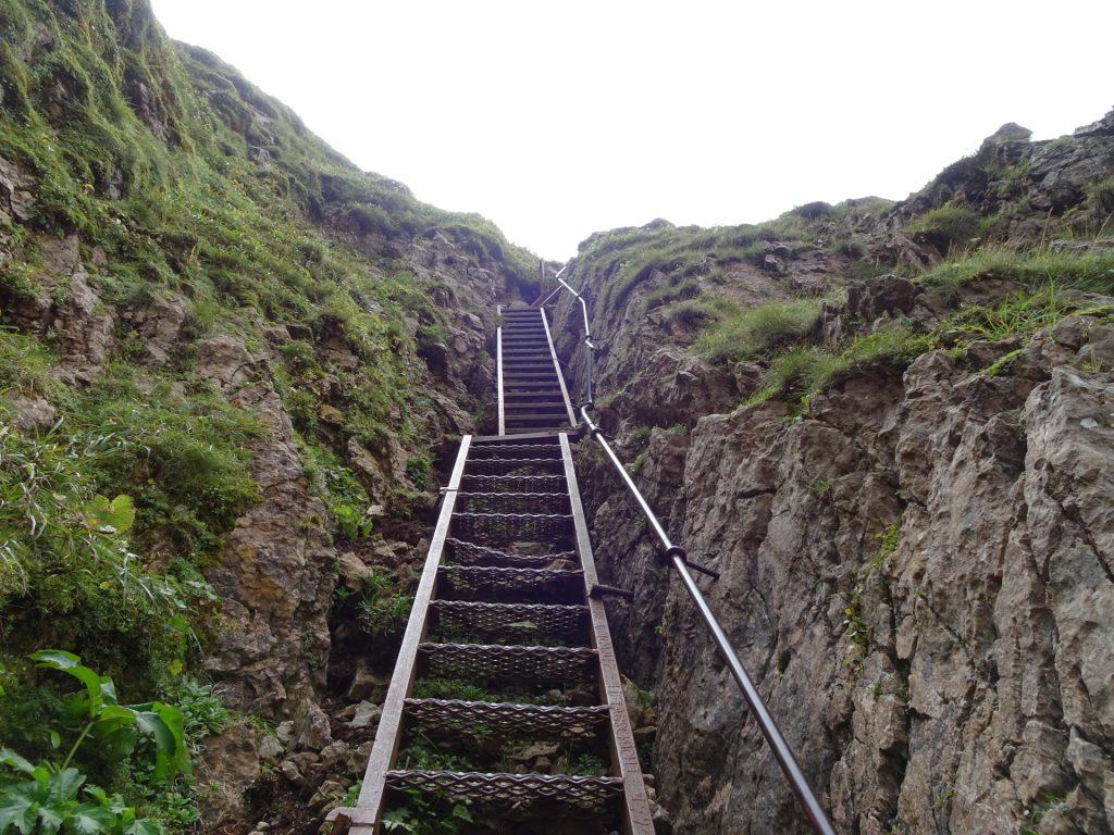 """Long iron ladder towards """"Eisenerzer Reichenstein"""""""