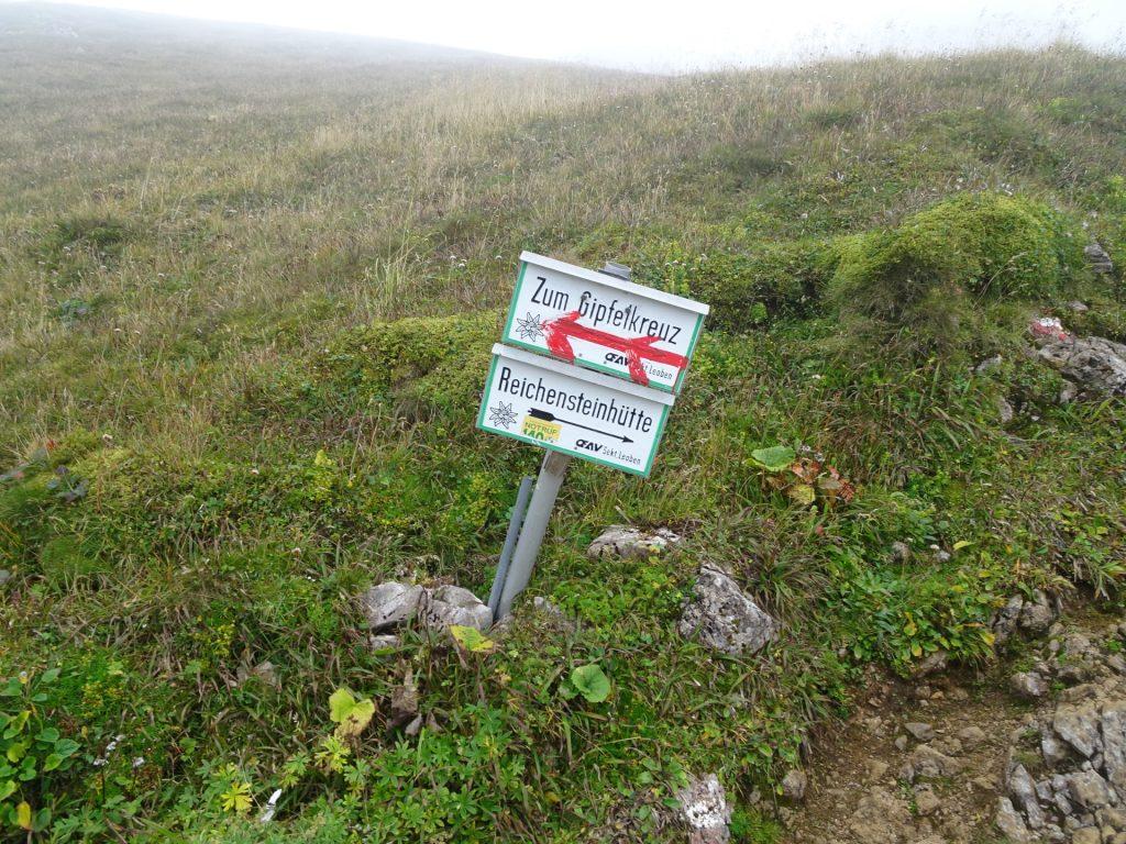 """Turn left towards the summit of """"Eisenerzer Reichenstein"""""""
