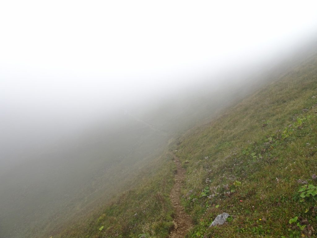 Trail towards the summit disappears in fog