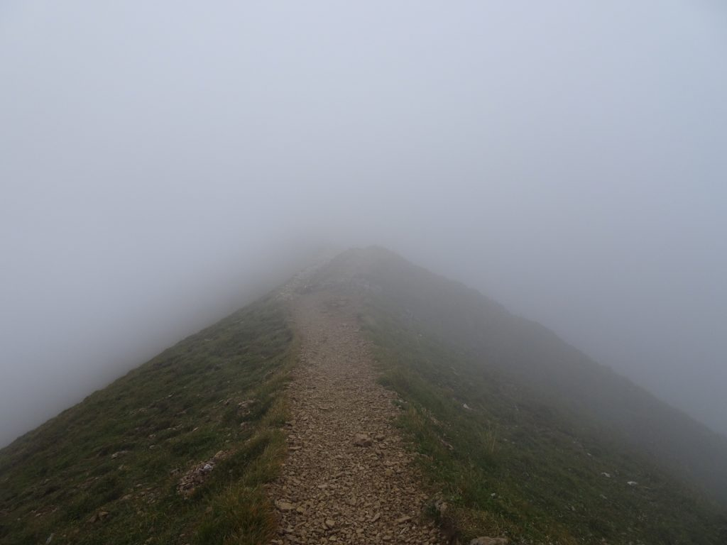 """Back, after the crossing, stay straight and follow the trail towards the """"Reichensteinhütte&quot: (hut)"""