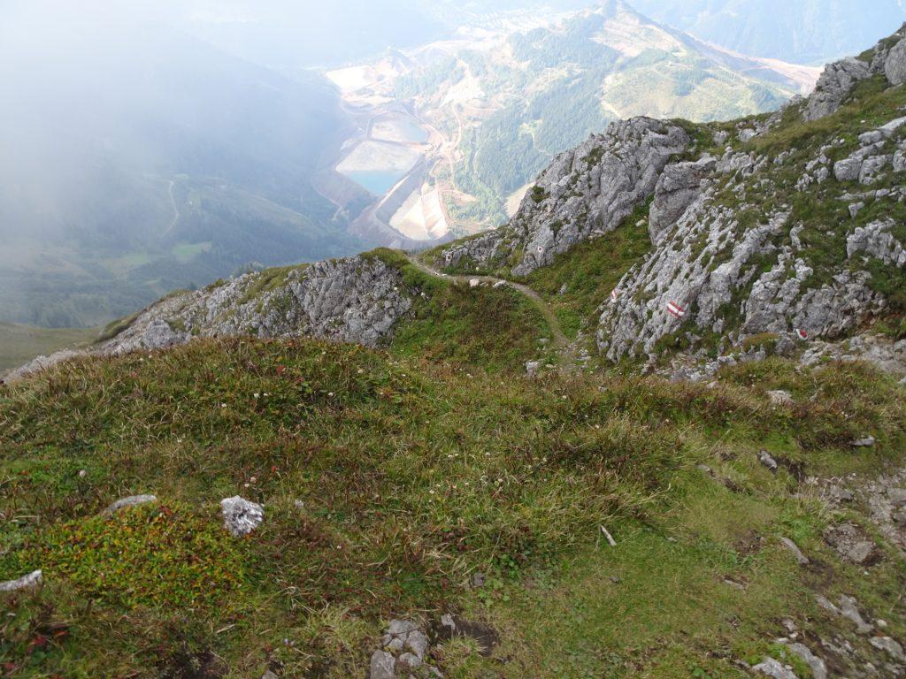 """Trail downwards to """"Reichenhals"""""""