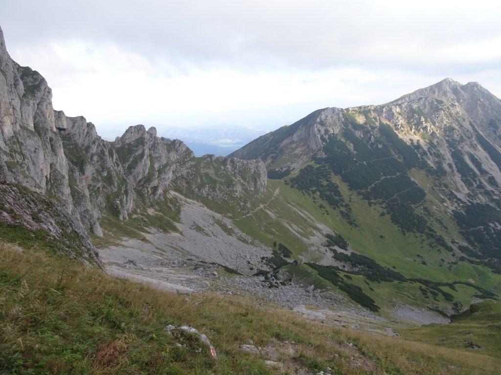 "Trail towards ""Krumpalm"" and ""Hirnalm"""