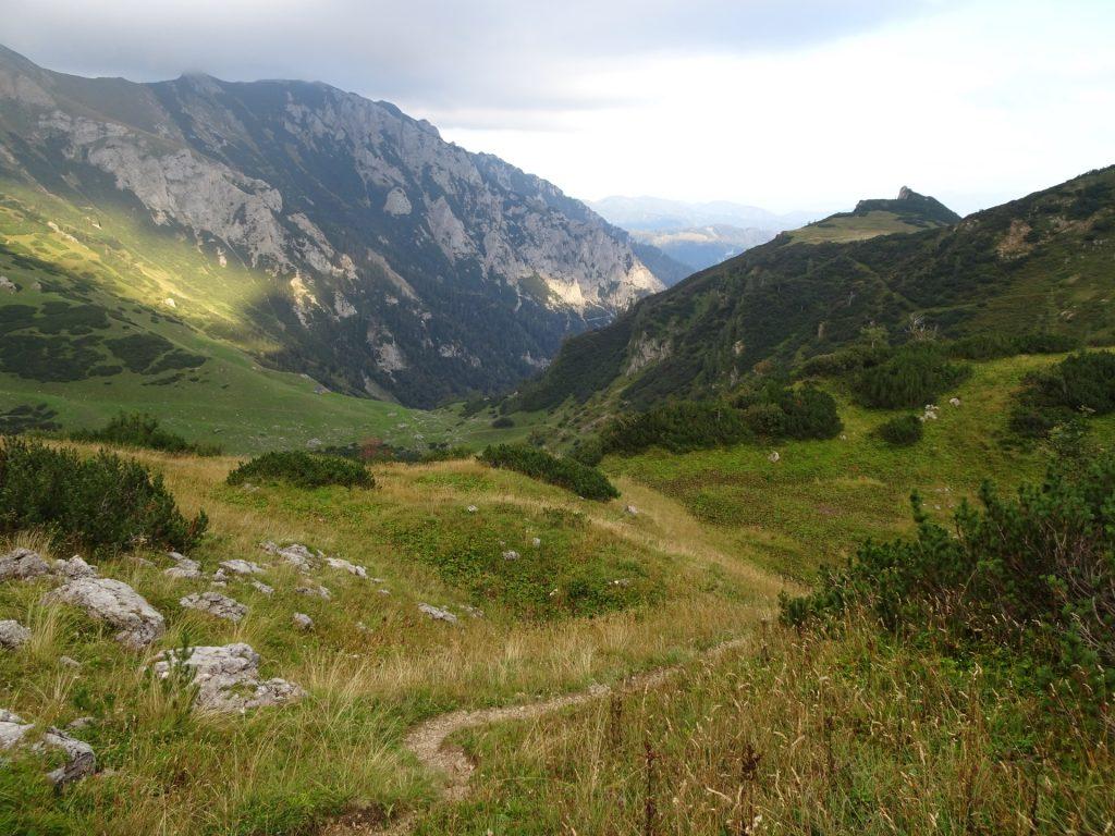 """Trail towards """"Krumpalm"""""""