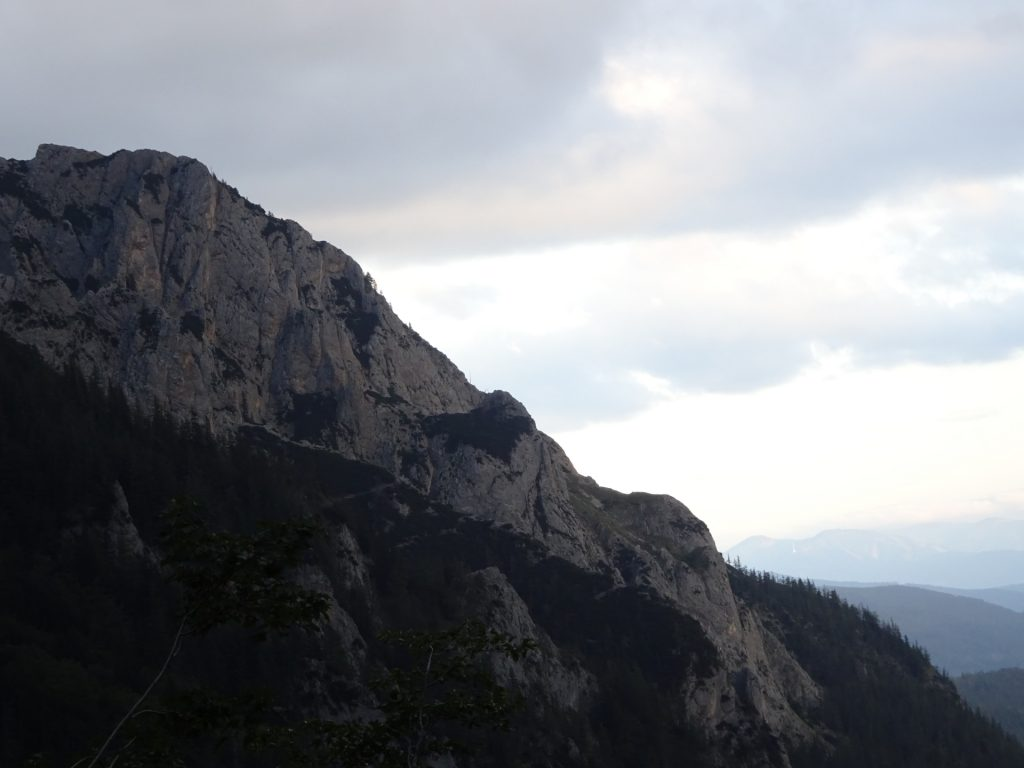 """View up towards """"Grete Klinger Steig"""" from the trail back"""