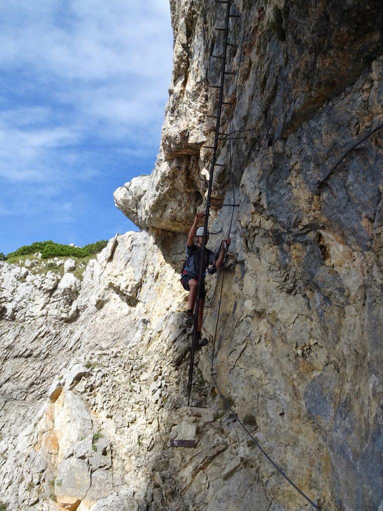 Bernhard climbs up the 2nd climbing tree