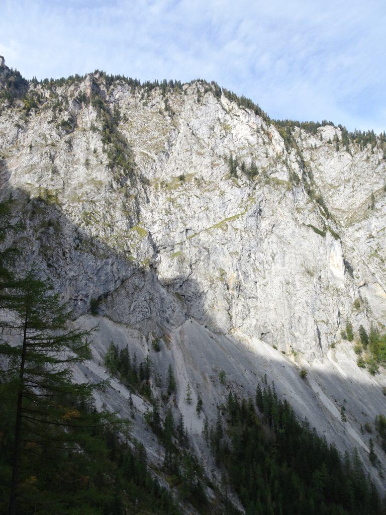 View towards Hoyossteig