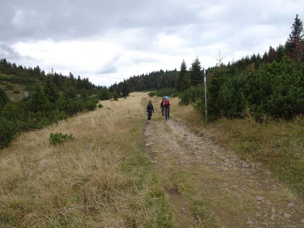 """On the hiking trail towards """"Praterstern"""""""