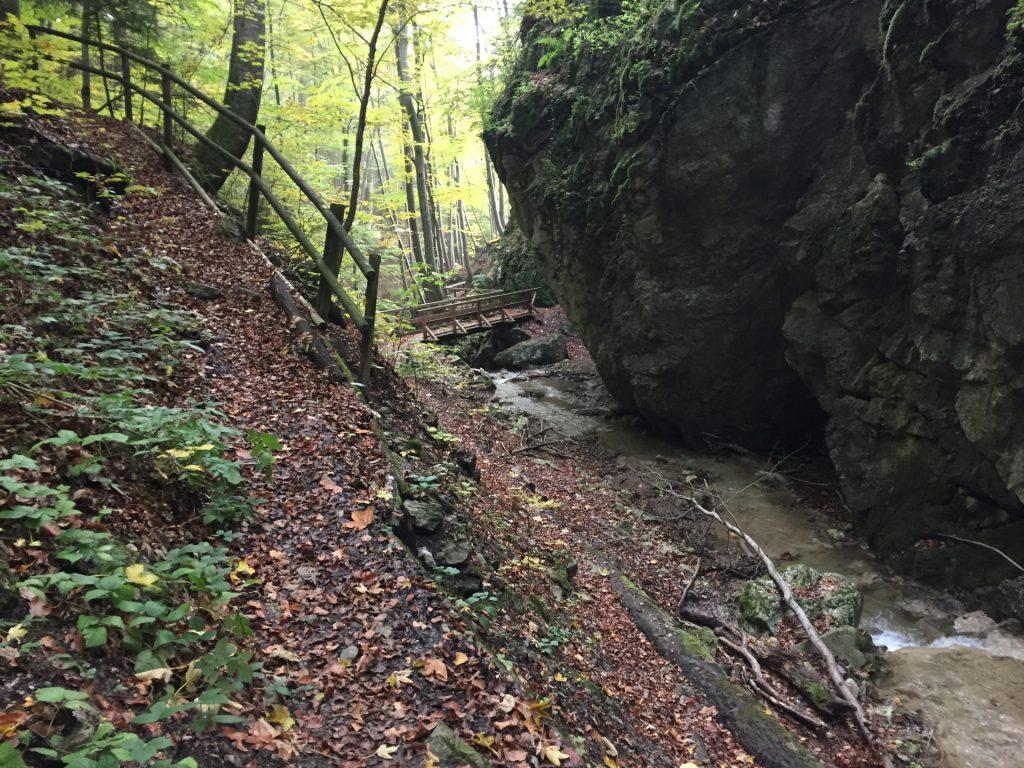 "Trail towards the ""Dürnbacher"" waterfall"