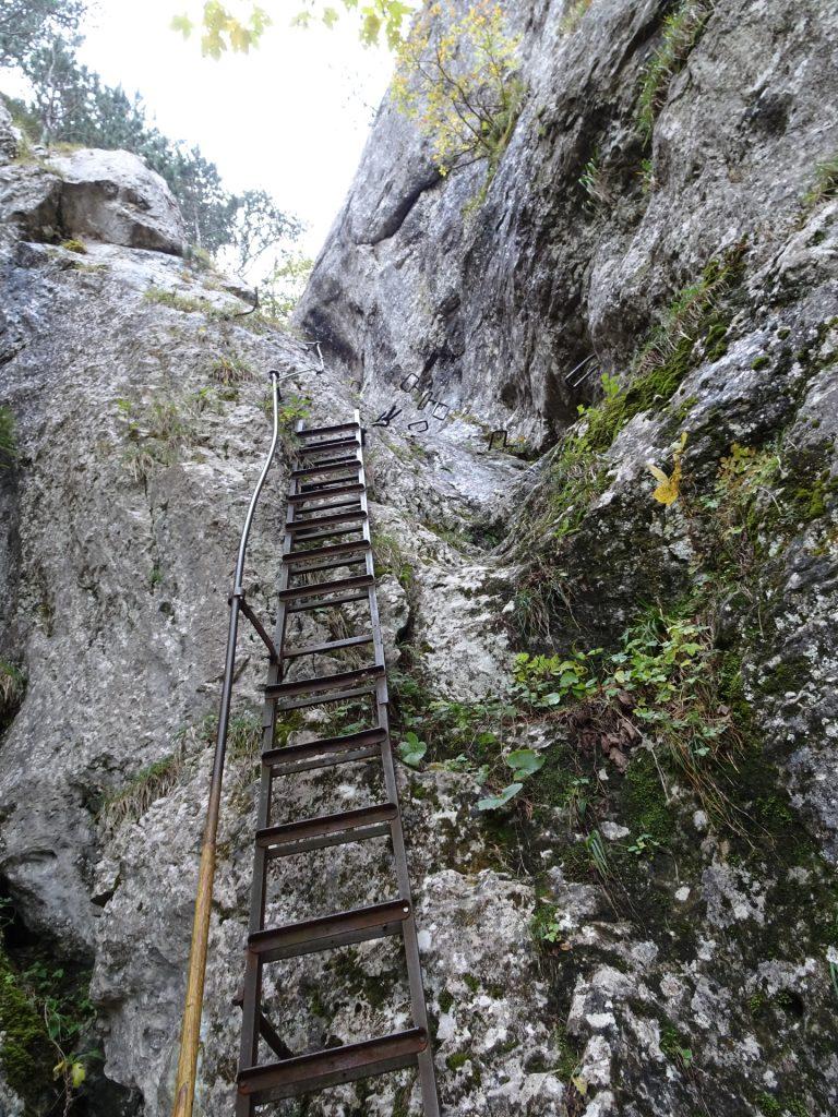 Long iron ladder leading upwards