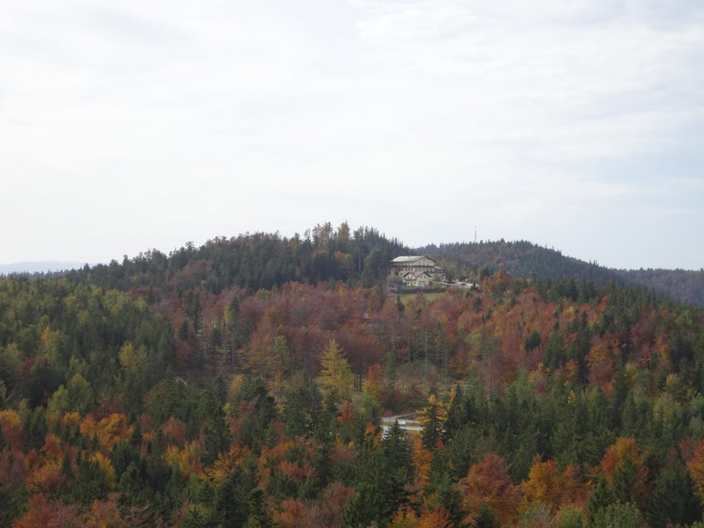 """View towards """"Gasthof Kleine Kanzel"""" from the viewpoint tower"""