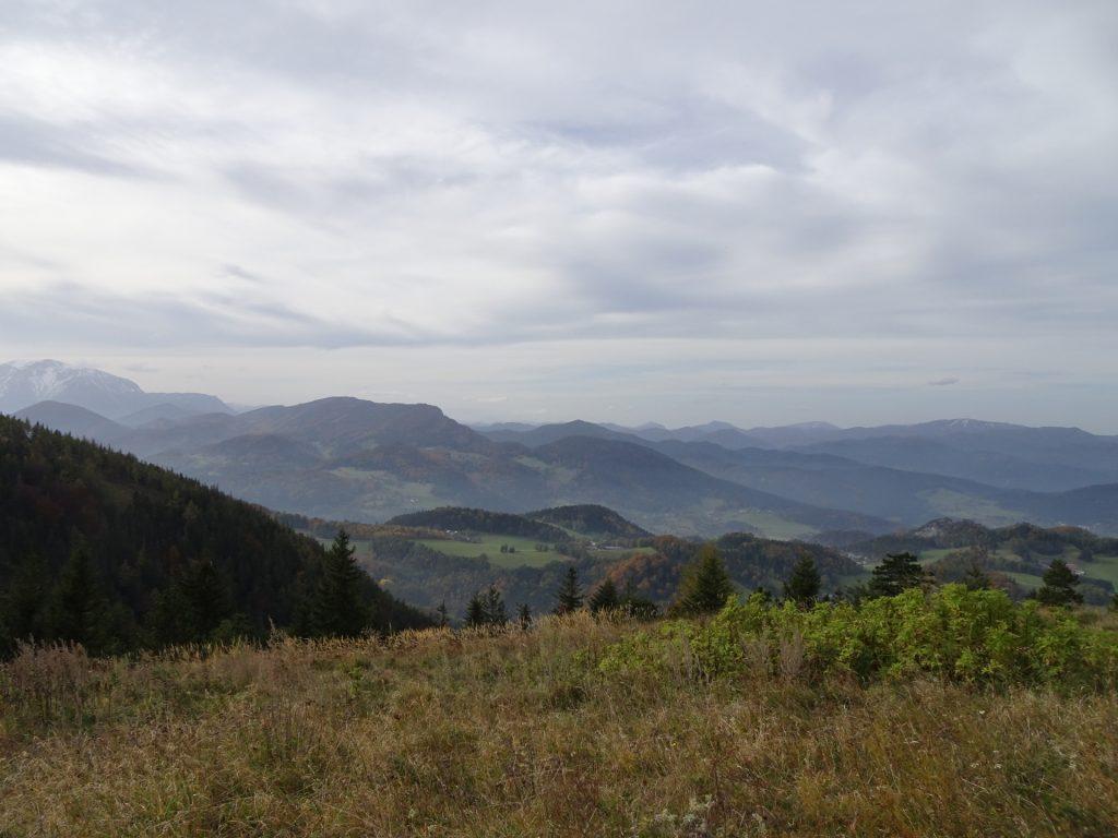 """View from the """"Waldeggerhaus"""""""