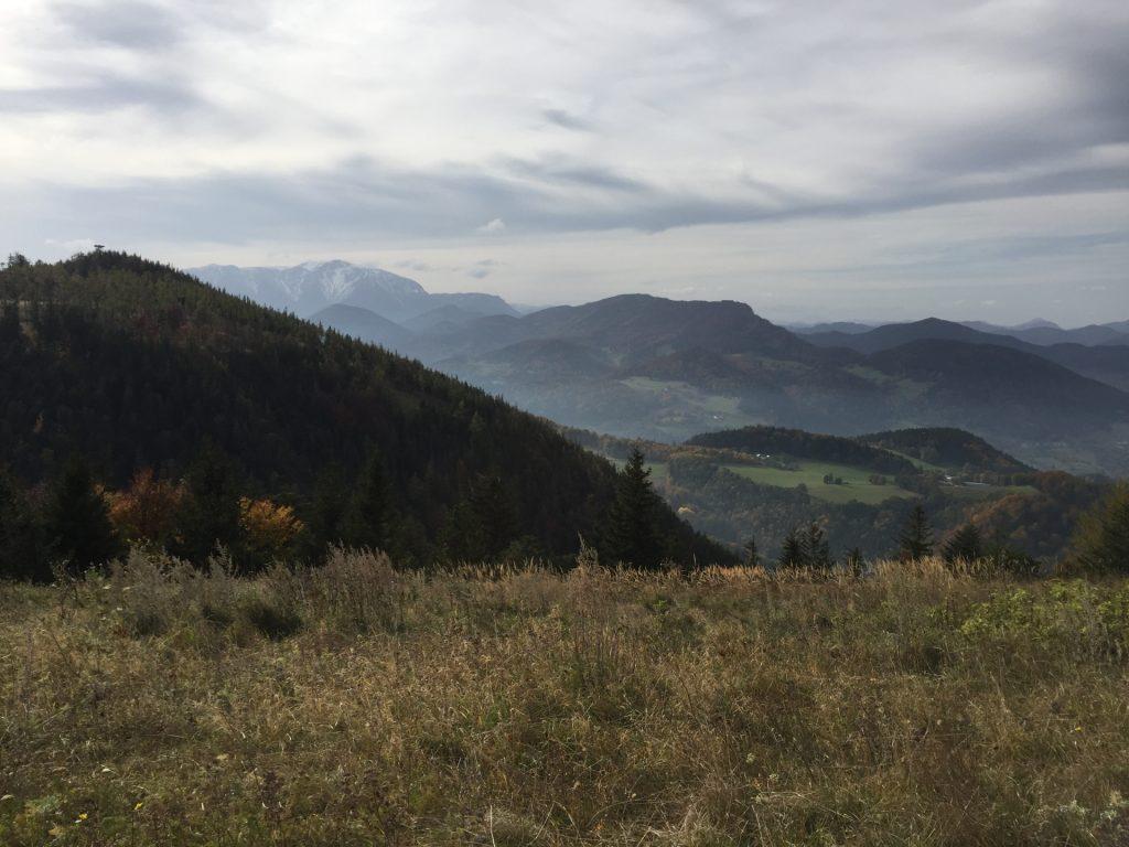 "Enjoying the view from ""Waldeggerhaus"""