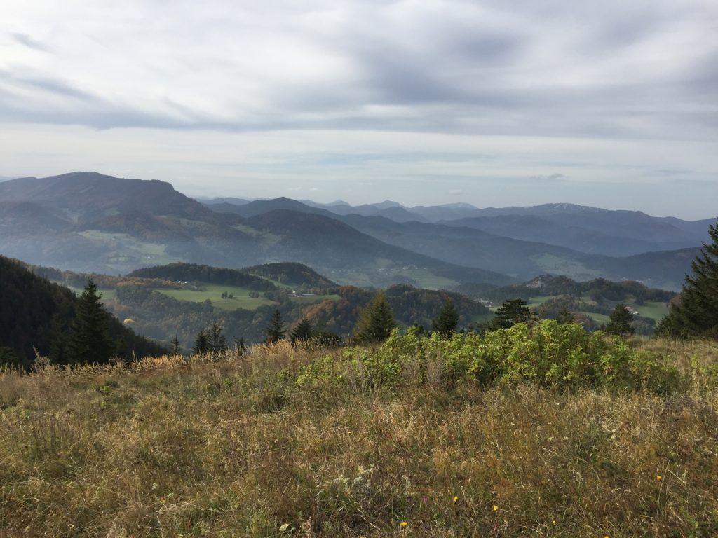 "Enjoying the view from the ""Waldeggerhaus"""