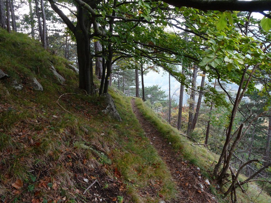 "Descending via the ""Stangelsteinweg"" (the ""Große Klause"" was closed)"