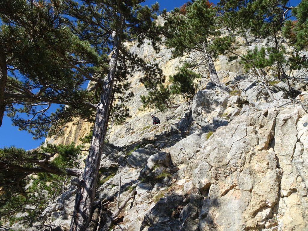 """GV-Steig: Towards the """"Weningerwand"""" ((2), B)"""