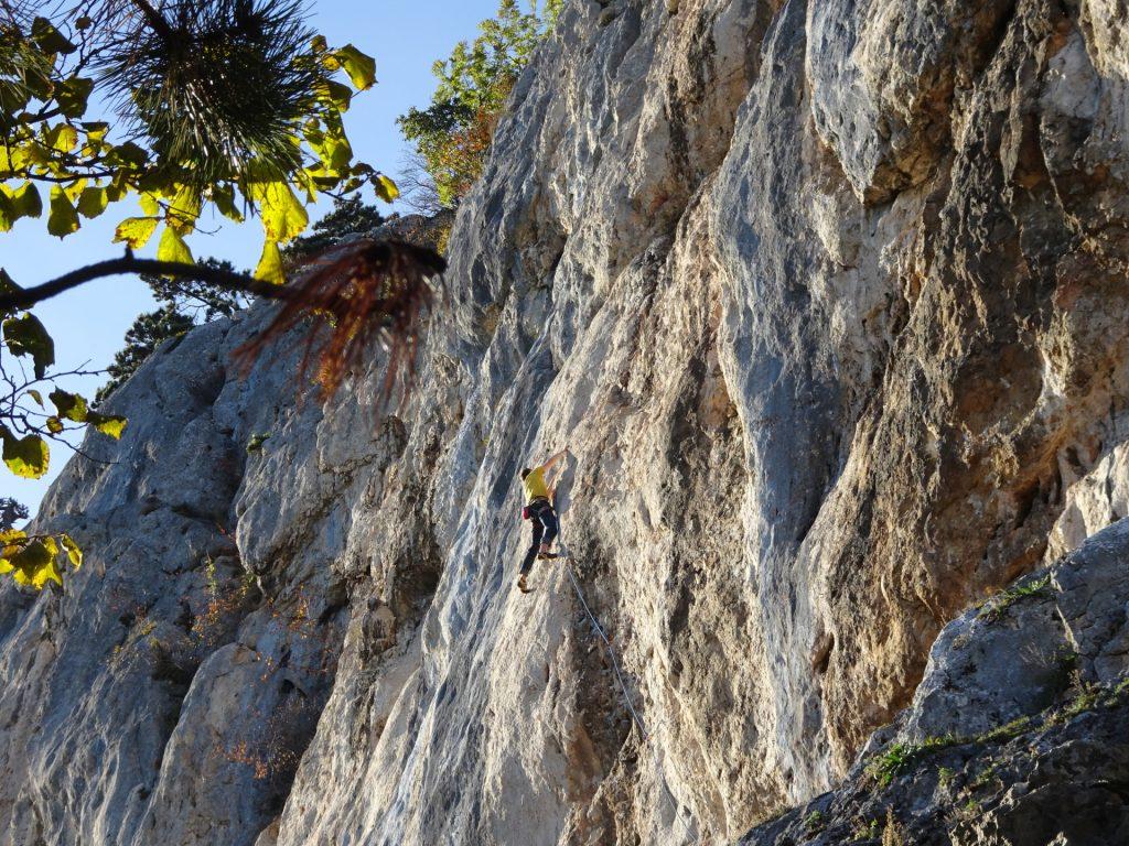 "A climber seen from the ""Springlessteig"""