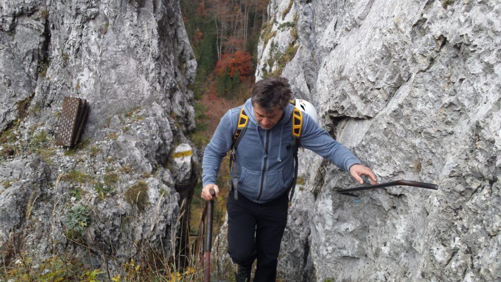 """Herbert climbs up the """"Schönbrunnerstiege"""""""