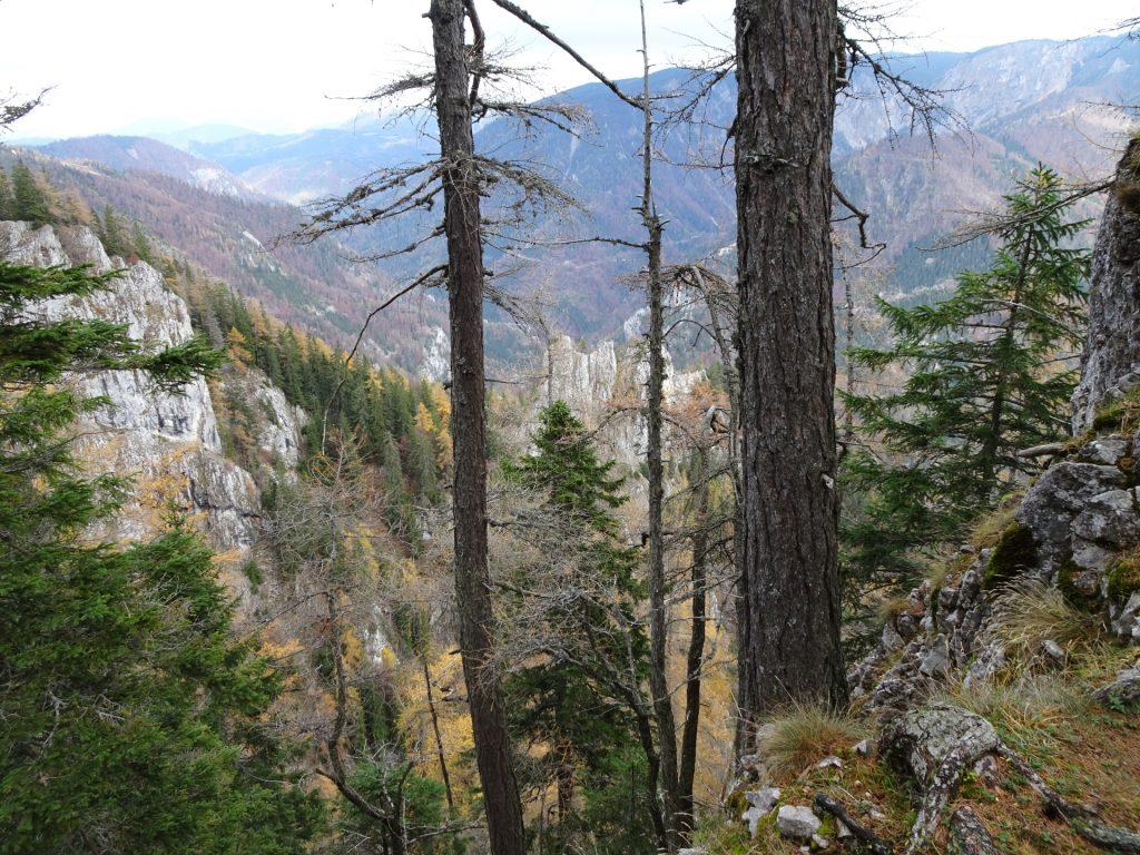 "View from ""Hoyossteig"""
