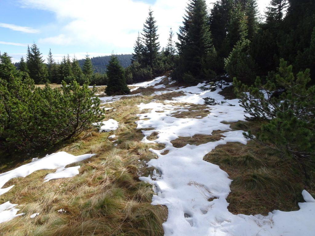 "View from upper ""Rudolfssteig"" towards ""Klobentörl"""