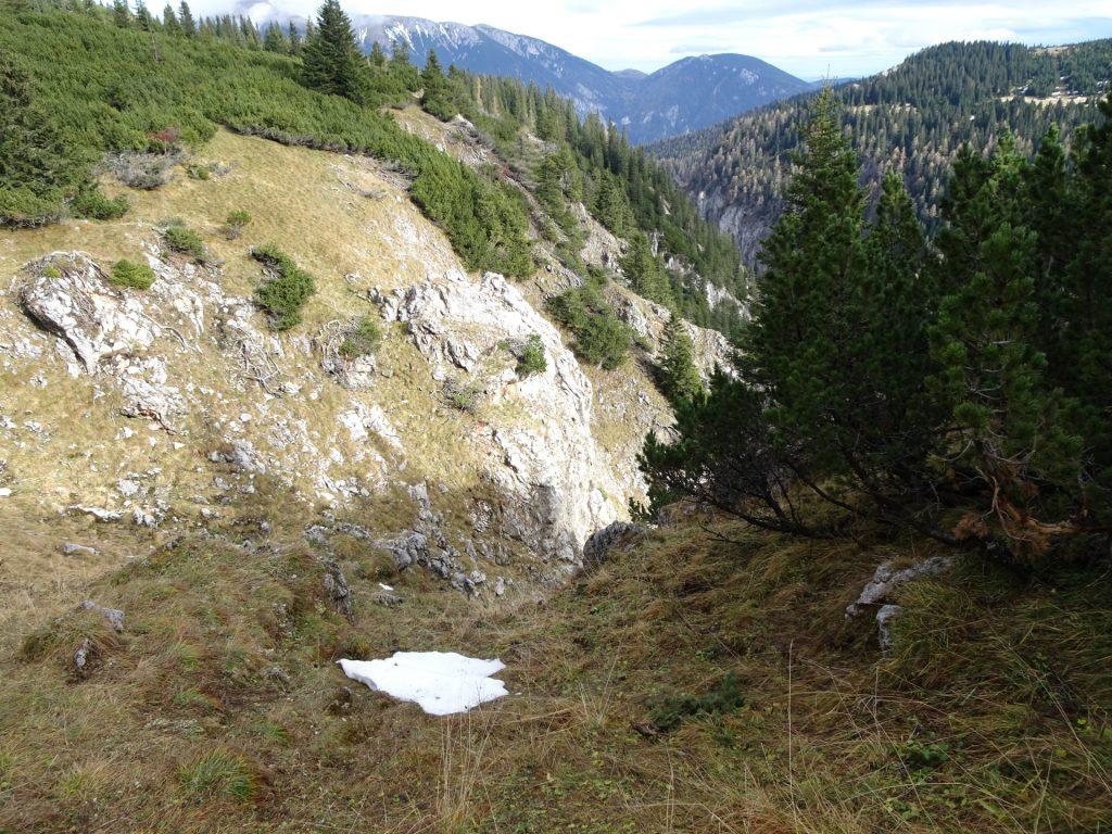 "Trail towards ""Dirnbacherhütte / Ottohaus"""