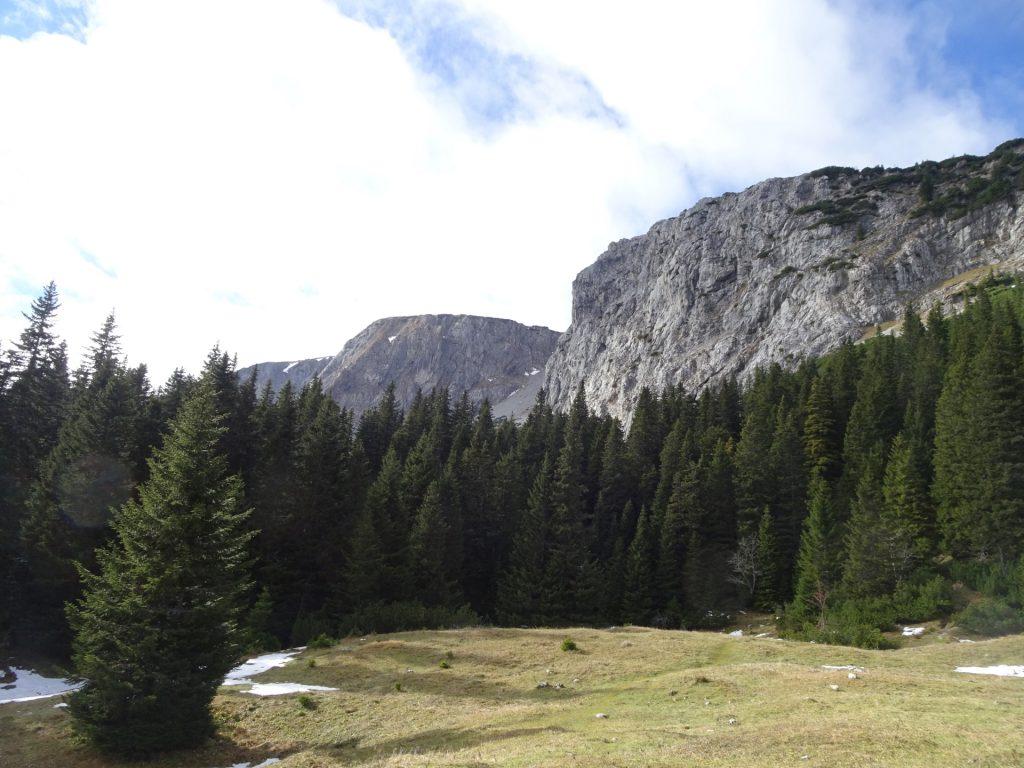"""View from """"Dirnbacherhütte"""""""