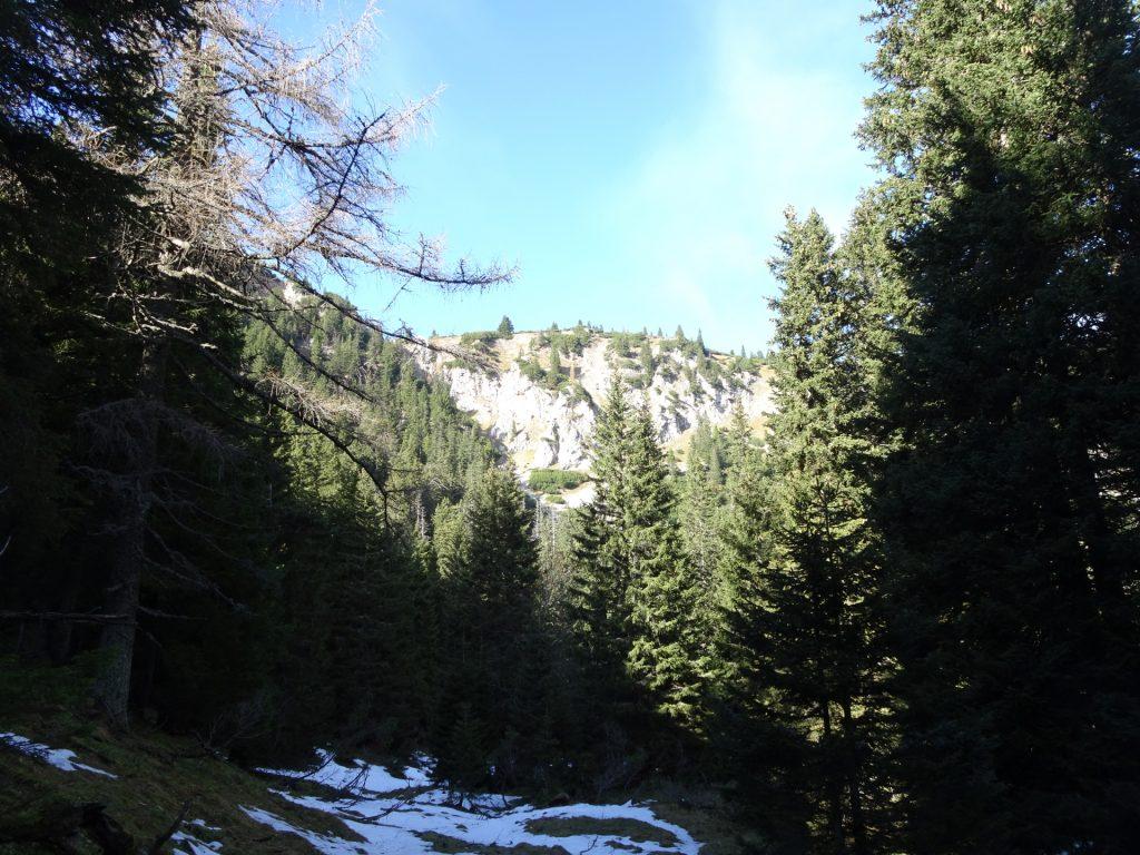 "Trail towards ""Gustav-Jahn-Steig"""