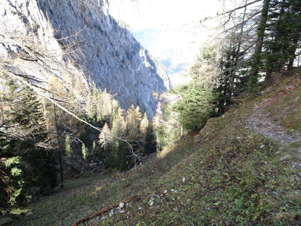 "Towards ""Gustav-Jahn-Steig"""