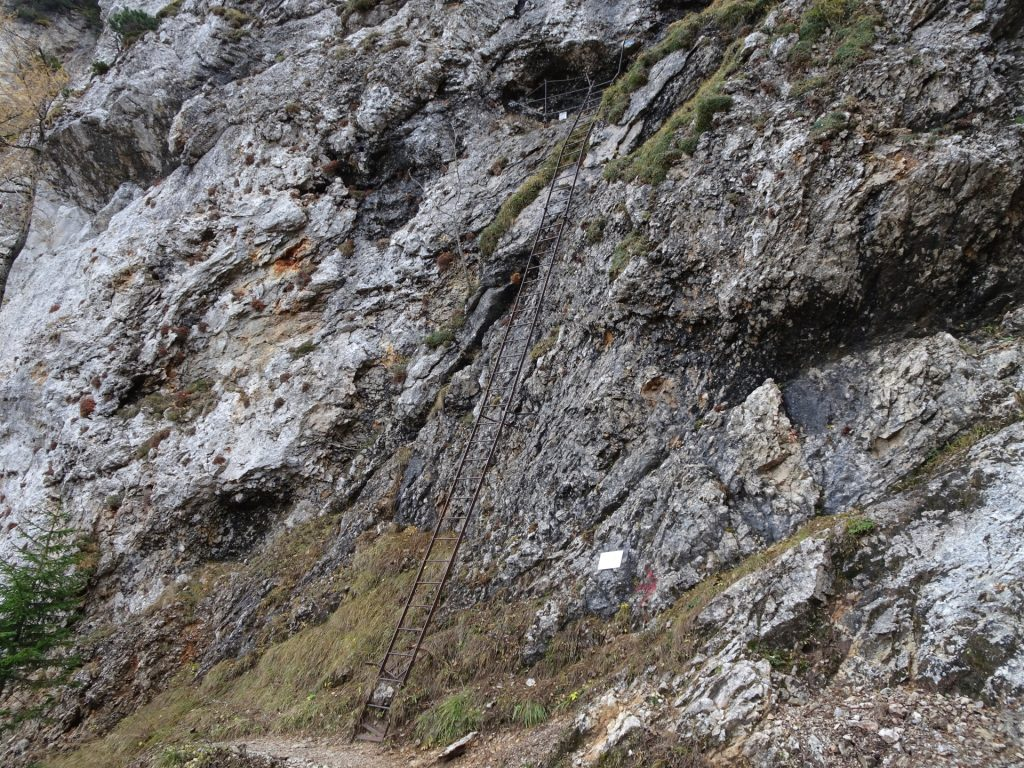 "The long iron ladder at the crossing between ""Gustav-Jahn-Steig"" and ""AV-Steig"""