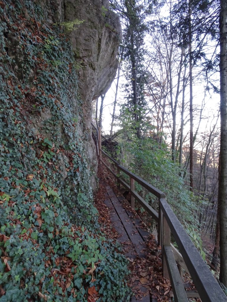 "Towards the ""Einhornhöhle"" at the end of ""Drobilweg"""