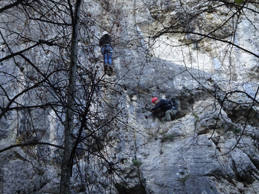 "Observing fellows on the crux of ""Währingersteig"""