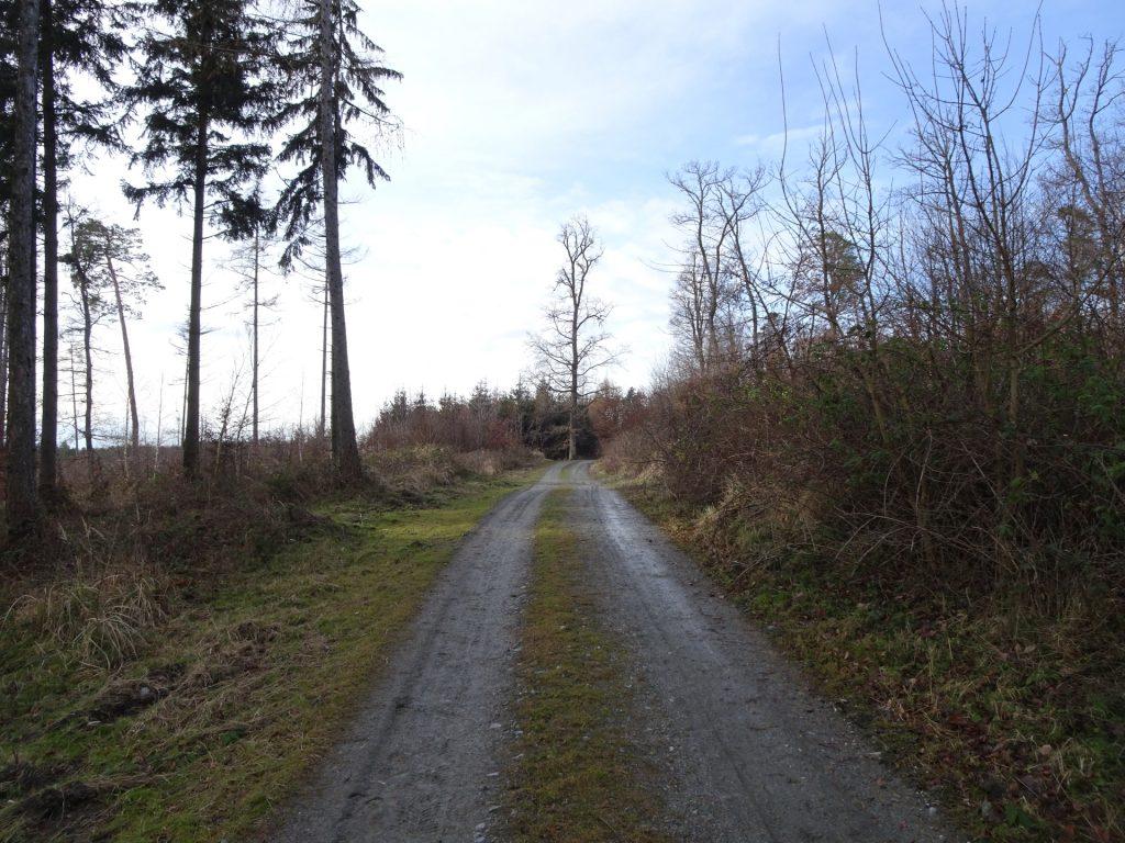 """Follow the road towards """"Geschriebenstein"""""""