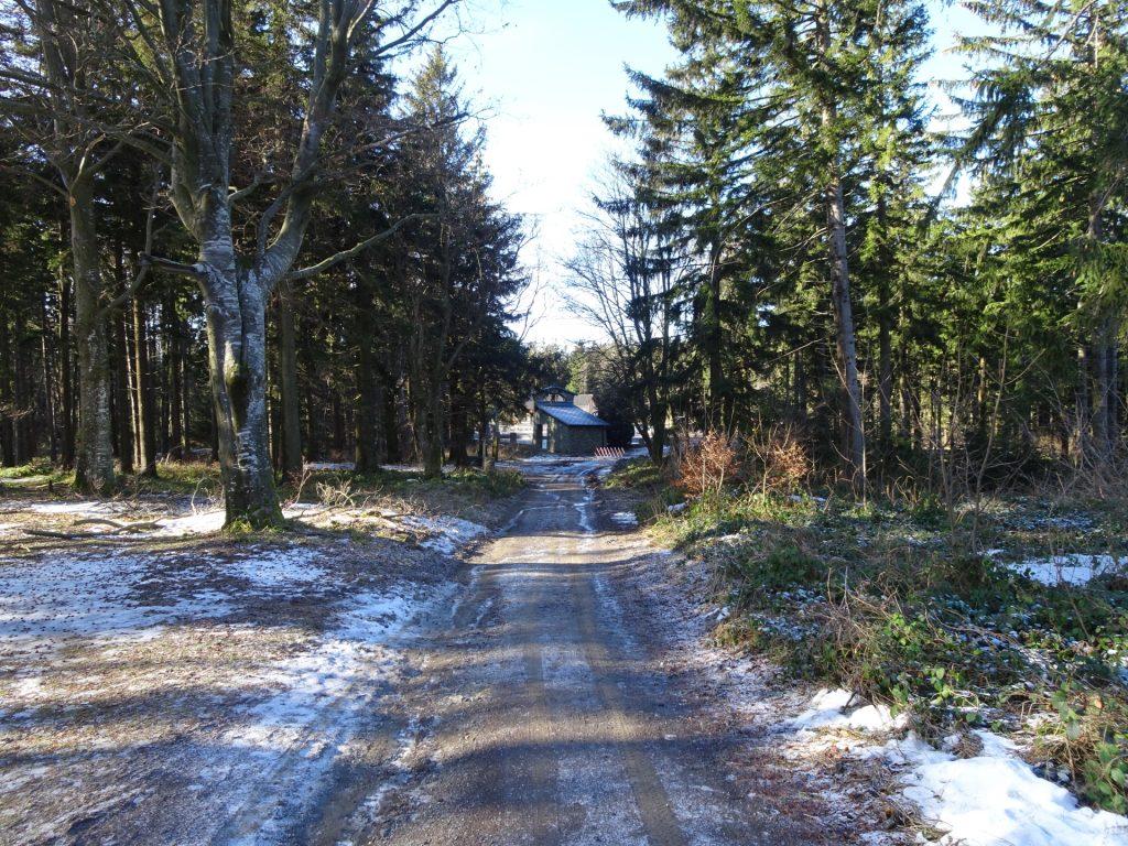 """Trail to """"Hirschenstein"""""""