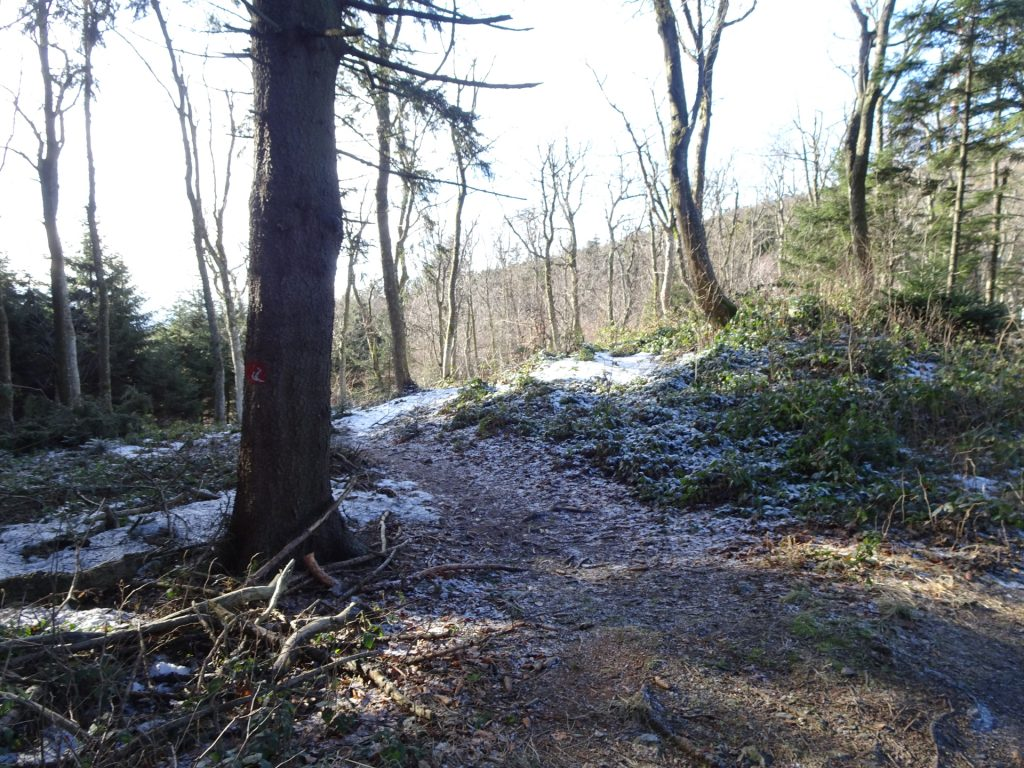 """Follow the small trail on the left towards the antenna of """"Hirschenstein"""""""