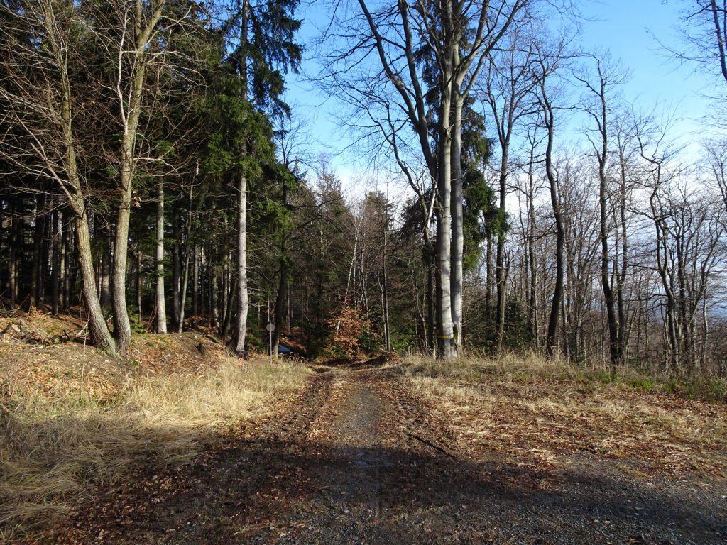 Trail back to Rechnitz