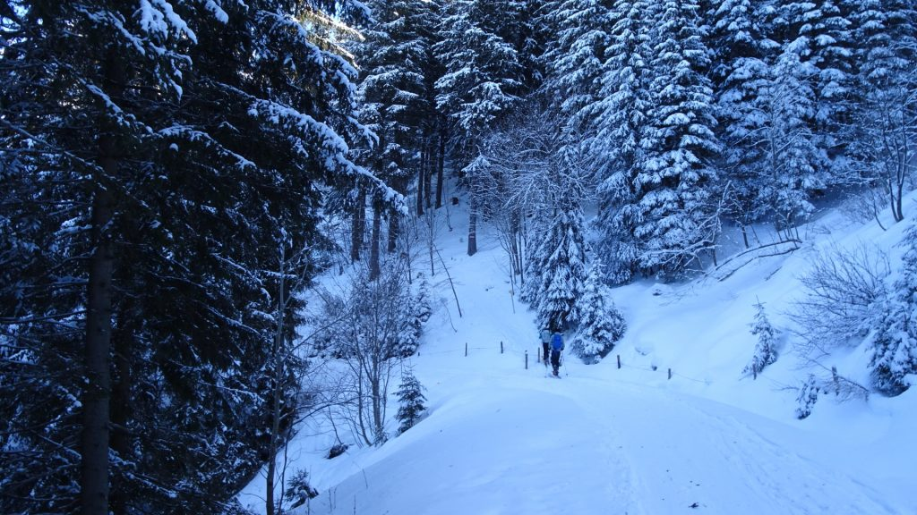 The trail towards Karl-Lechner-Haus (right up)