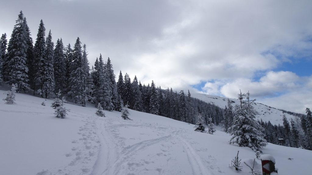 On the trail towards Stuhleck